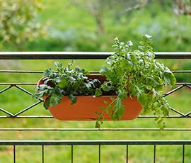 Κήπος στο μπαλκόνι