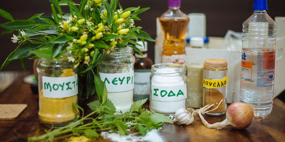 Προστατέψτε τα φυτά σας, οικολογικά