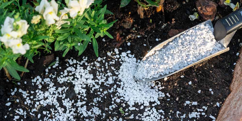 Πώς χρησιμοποιούμε τον περλίτη στην κηπουρική