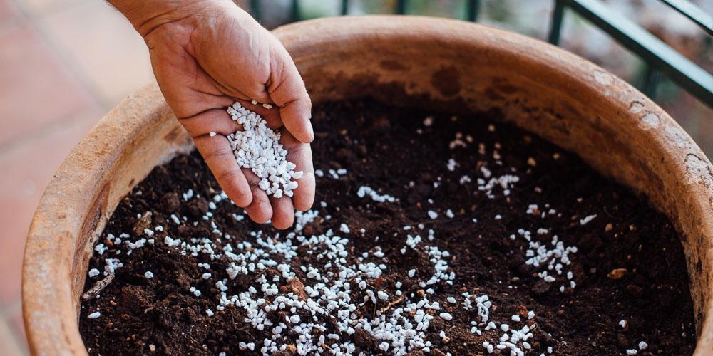 Περλίτης, χρήσεις στα φυτά
