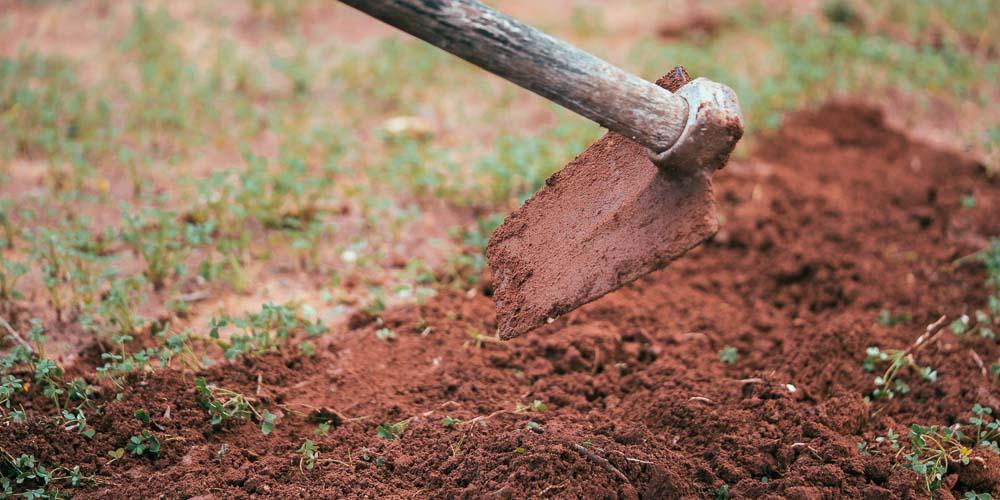 Πώς βελτιώνουμε το χώμα, προετοιμασία εδάφους για καλλιέργεια