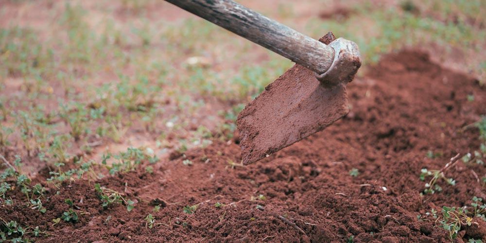 5 υλικά για βελτίωση εδάφους