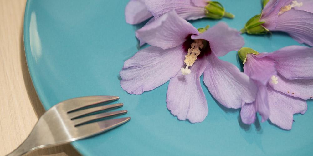 Εδώδιμα άνθη, 5 λουλούδια που τρώγονται