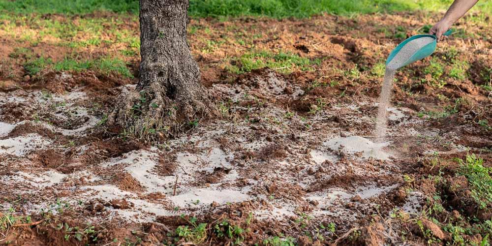 Ατταπουλγίτης, πώς χρησιμοποιείται στα φυτά και στις καλλιέργειες