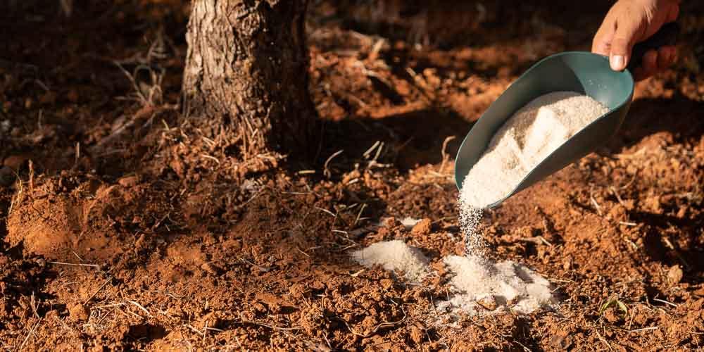 Ψευδάργυρος, τι προσφέρει ως λίπασμα σε φυτά και καλλιέργειες