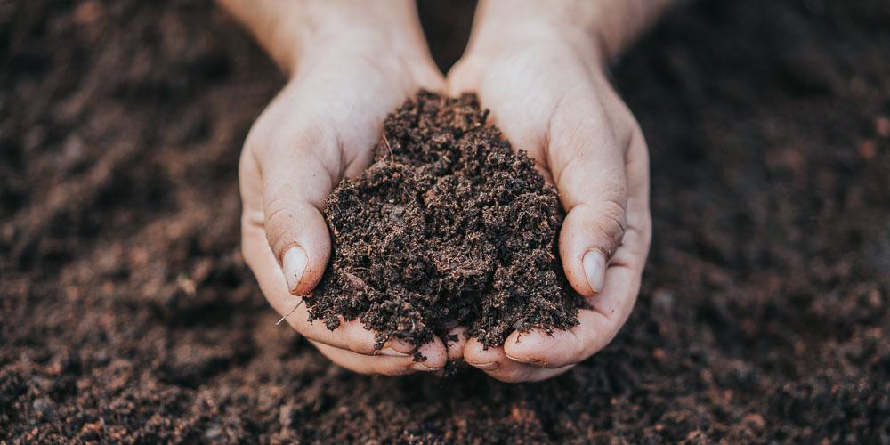 Τι είναι η οργανική ουσία του εδάφους